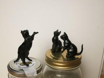 黒猫0095.JPG