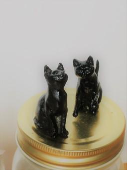 黒猫0100.JPG